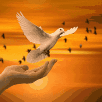 Comment définir en détails une prière de gratitude efficace?