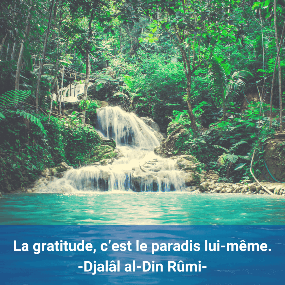 citation-gratitude-Djalâl al-Din Rûmi-