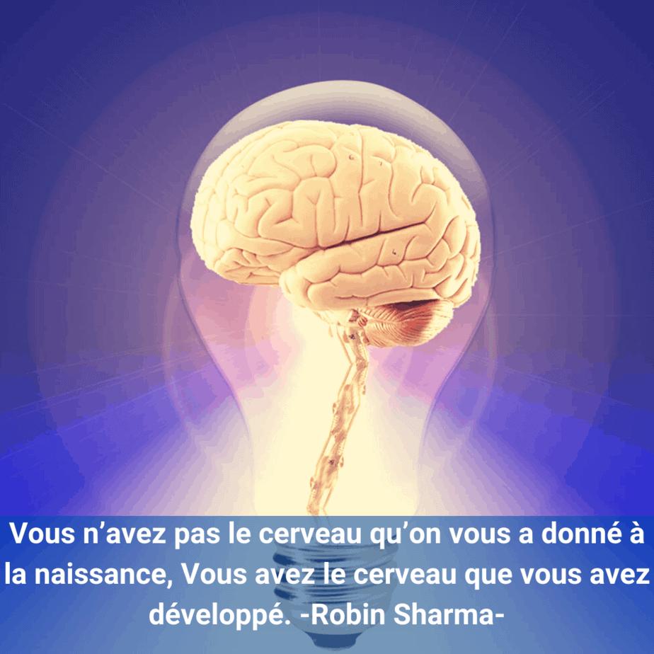 cerveau- citation- Robin Sharma-
